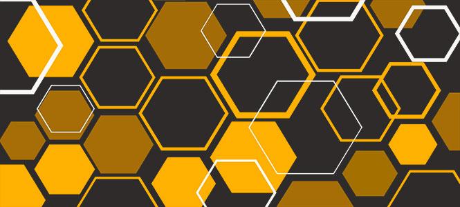 une-une histoire des abeilles